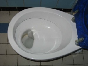 german_shelf_toilet